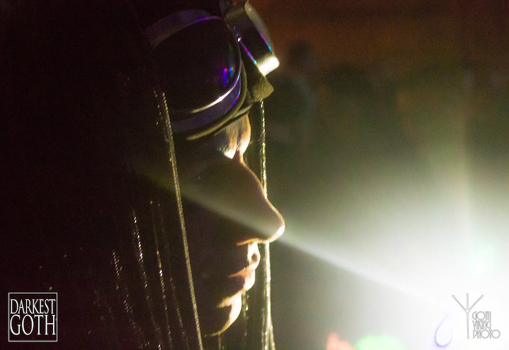 Great picture of Rocky Doll bathed in light.